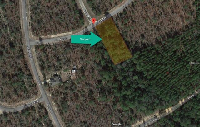 Jeffers Court, Chipley, FL 32428 (MLS #O5751428) :: Griffin Group