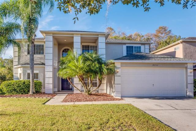 14250 Nottingham Way Circle, Orlando, FL 32828 (MLS #O5751510) :: RE/MAX Realtec Group
