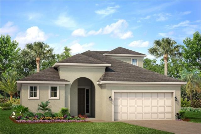 3261 Bethpage Loop, Mount Dora, FL 32757 (MLS #O5751578) :: Team Touchstone