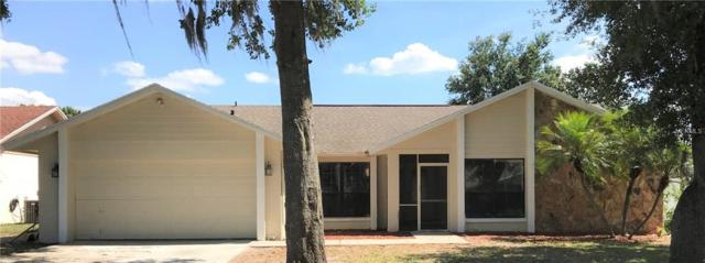 709 Sagewood Drive, Lakeland, FL 33813 (MLS #O5751636) :: KELLER WILLIAMS CLASSIC VI