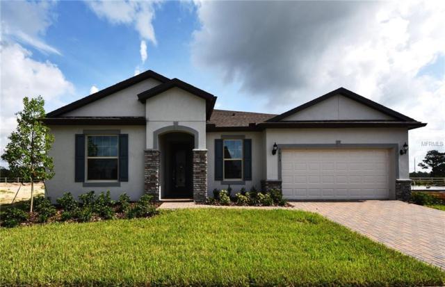 5613 Barletta Drive, Saint Cloud, FL 34771 (MLS #O5751637) :: KELLER WILLIAMS CLASSIC VI