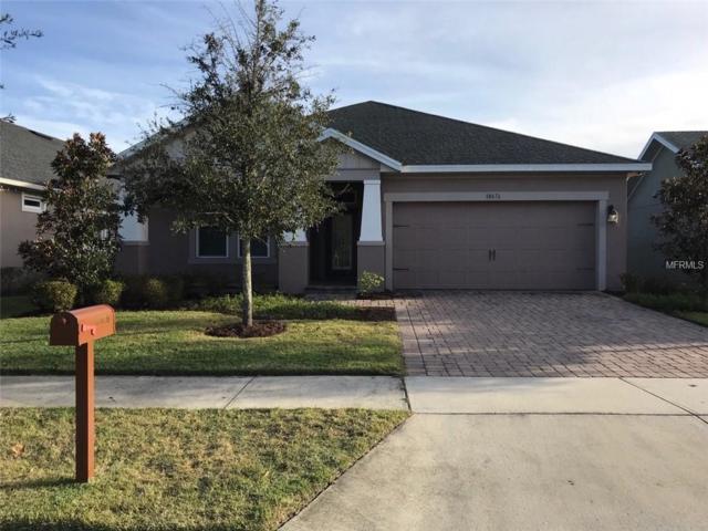 10676 Langefield Street, Orlando, FL 32832 (MLS #O5752043) :: Godwin Realty Group