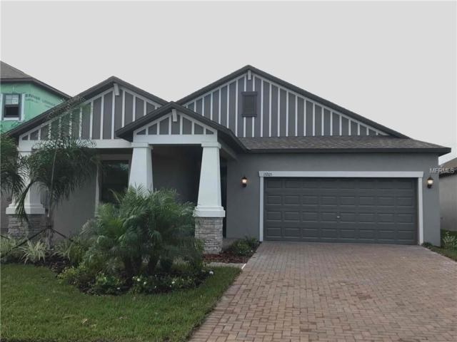 13205 Haystack Court, Riverview, FL 33579 (MLS #O5752091) :: Baird Realty Group