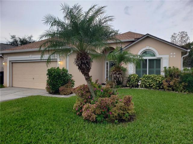 3003 Elbib Drive, Saint Cloud, FL 34772 (MLS #O5752271) :: Remax Alliance