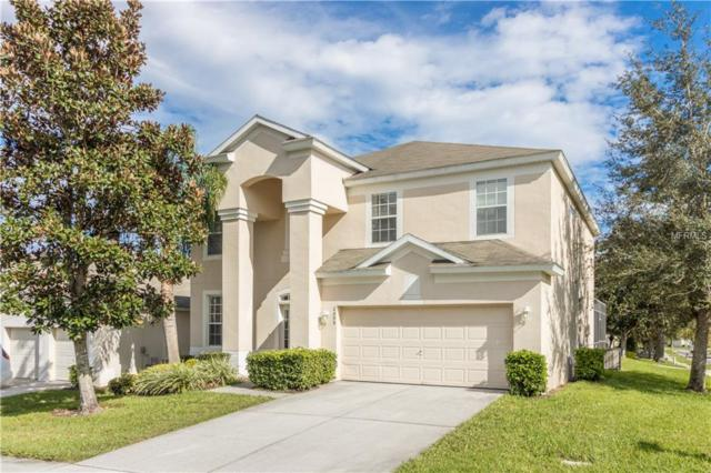 2699 Manesty Lane, Kissimmee, FL 34747 (MLS #O5752295) :: Griffin Group