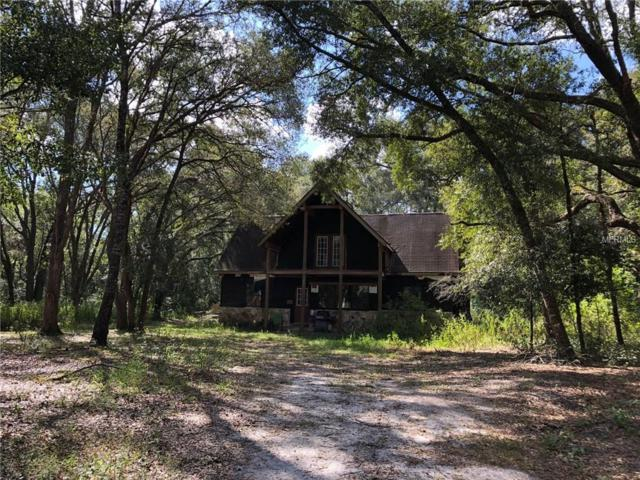 2010 Smitty Road, Weirsdale, FL 32195 (MLS #O5752305) :: Team Touchstone