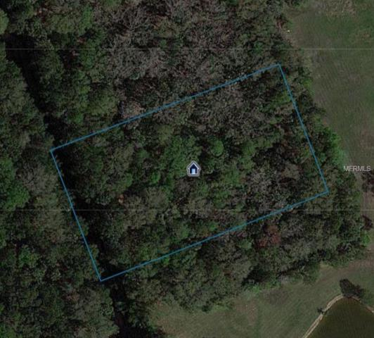 No Street, Oak Hill, FL 32759 (MLS #O5752436) :: Advanta Realty