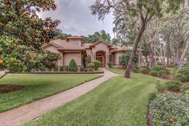 8657 Crested Eagle Place, Sanford, FL 32771 (MLS #O5752551) :: Delgado Home Team at Keller Williams