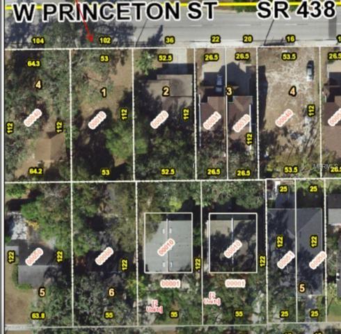 102 W Princeton Street, Orlando, FL 32804 (MLS #O5752832) :: The Light Team