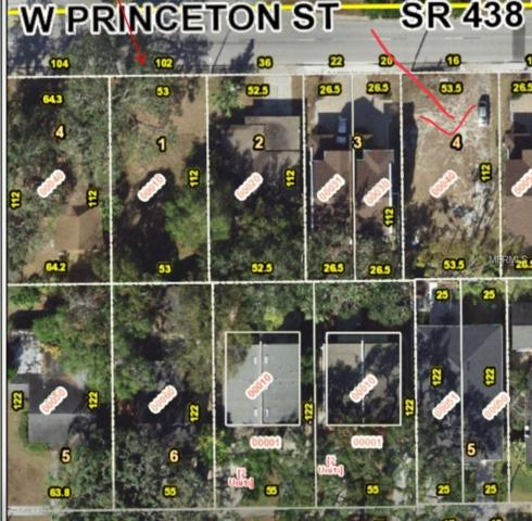 16 W Princeton Street, Orlando, FL 32804 (MLS #O5752834) :: The Light Team