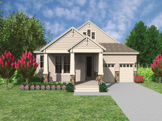 10049 Little Alcove Loop, Winter Garden, FL 34787 (MLS #O5752975) :: Bustamante Real Estate