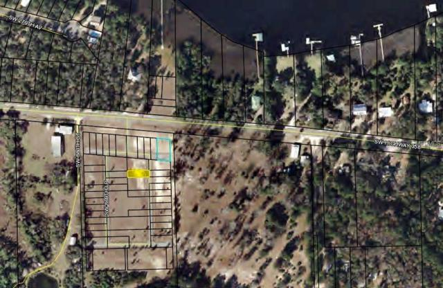 Unspecified, Steinhatchee, FL 32359 (MLS #O5753188) :: The Duncan Duo Team