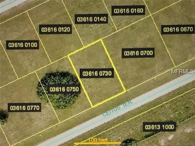 1429 Ceitus Terrace, Cape Coral, FL 33991 (MLS #O5753191) :: The Duncan Duo Team