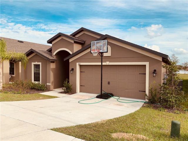 834 Laurel View Way, Groveland, FL 34736 (MLS #O5754090) :: Team Suzy Kolaz