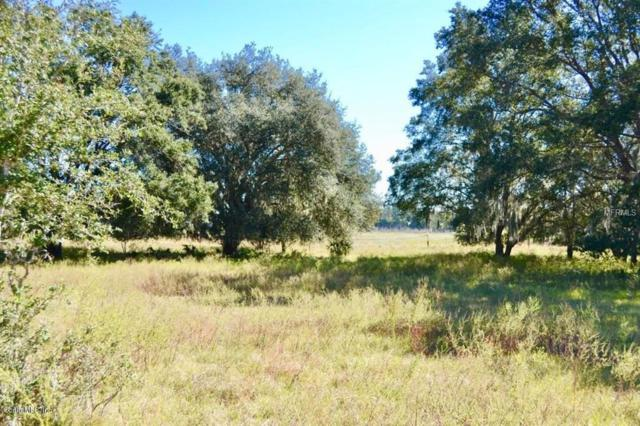 0 SE County Rd 337 Road, Dunnellon, FL 34431 (MLS #O5754722) :: Mark and Joni Coulter | Better Homes and Gardens