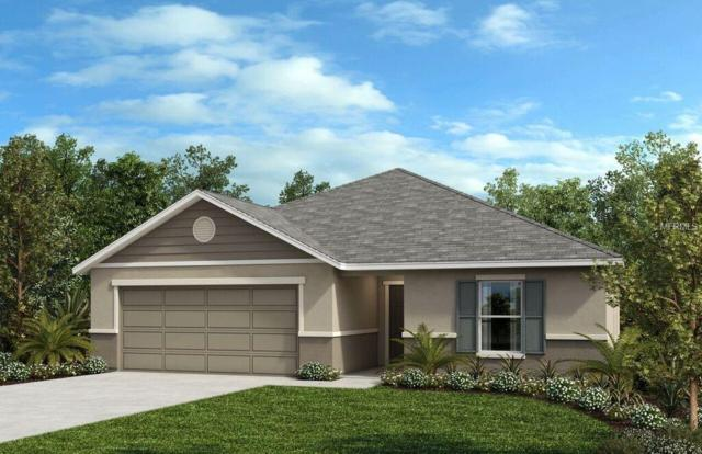 2481 Biscotto Circle, Davenport, FL 33897 (MLS #O5755333) :: Team Bohannon Keller Williams, Tampa Properties