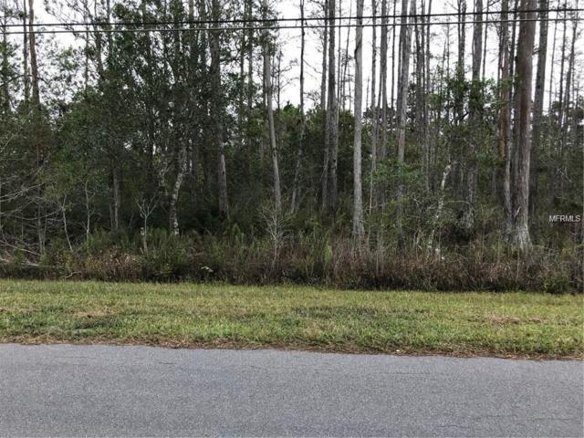 Quinlan Street 3A, Orlando, FL 32833 (MLS #O5755514) :: Homepride Realty Services