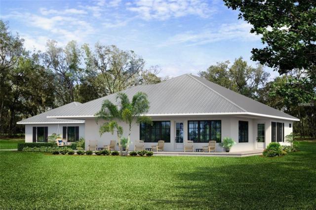 110425 N Athenia Drive, Citrus Springs, FL 34434 (MLS #O5755789) :: The Duncan Duo Team