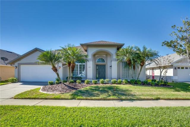 18518 Avocet Drive, Lutz, FL 33558 (MLS #O5755992) :: Griffin Group