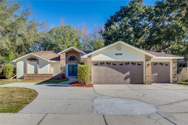 9743 Hermosillo Drive, New Port Richey, FL 34655 (MLS #O5756000) :: Griffin Group