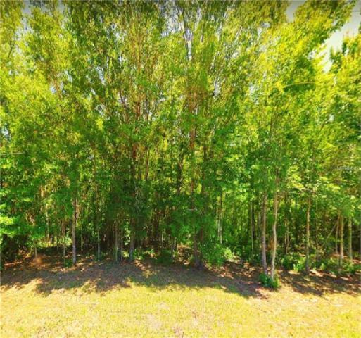 8147 W Nicholas Lane, Crystal River, FL 34429 (MLS #O5756009) :: Griffin Group