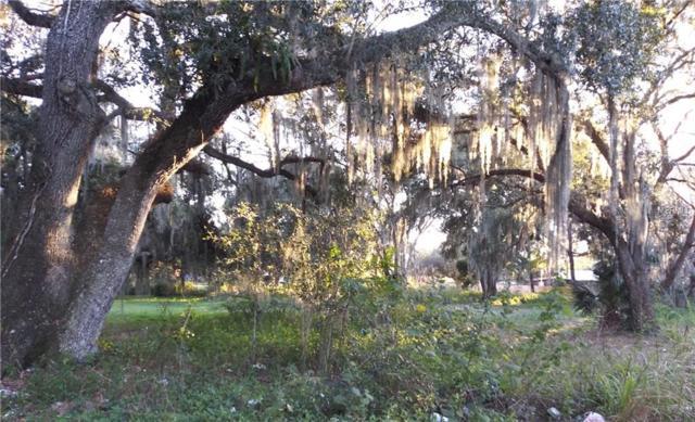 W 14TH Street, Sanford, FL 32771 (MLS #O5756047) :: Dalton Wade Real Estate Group