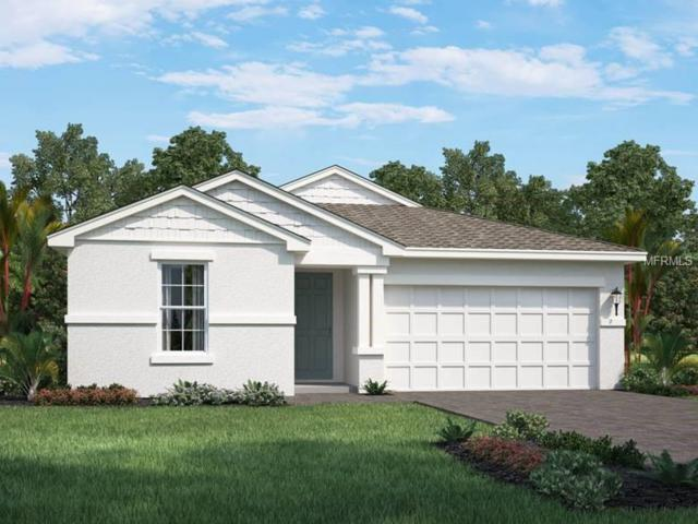 12588 Ryegrass Loop, Parrish, FL 34219 (MLS #O5756128) :: Baird Realty Group