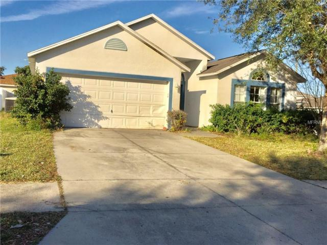 1631 Sterns Drive, Leesburg, FL 34748 (MLS #O5756300) :: Team Bohannon Keller Williams, Tampa Properties