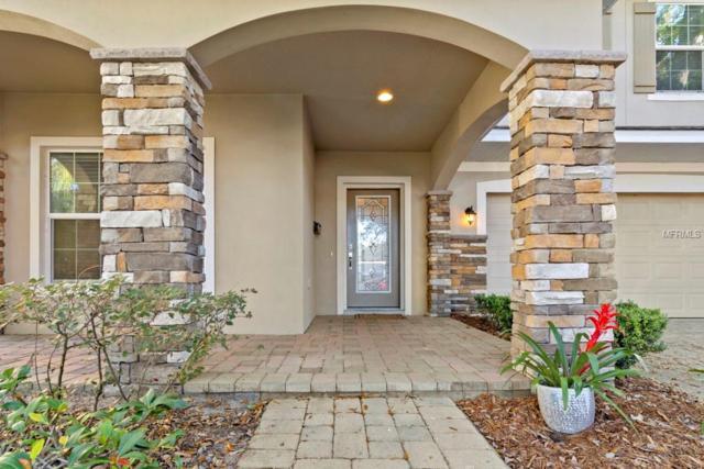 500 Hazel Court, Orlando, FL 32804 (MLS #O5756469) :: Your Florida House Team