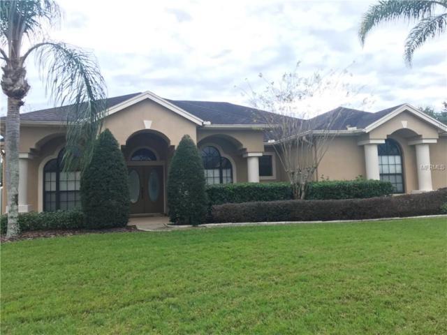 4204 Kezar Court, Orlando, FL 32812 (MLS #O5756581) :: Your Florida House Team