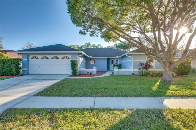5718 Dalton Court, New Port Richey, FL 34655 (MLS #O5756669) :: Griffin Group