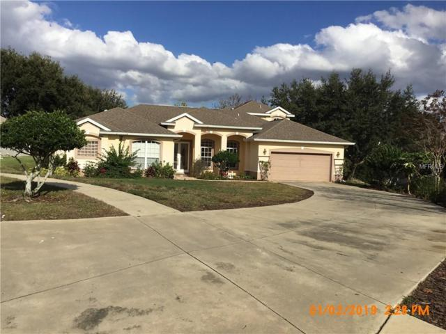 11418 Crystal View Court, Clermont, FL 34711 (MLS #O5757328) :: Zarghami Group