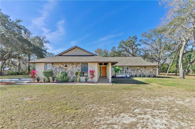 10321 Indian Mound Drive, New Port Richey, FL 34654 (MLS #O5757402) :: Griffin Group