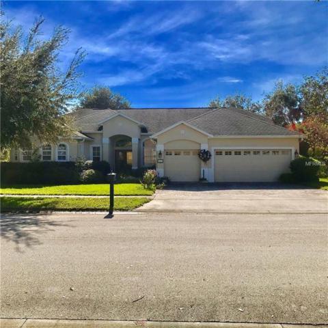 327 Beacon Pointe Drive, Ocoee, FL 34761 (MLS #O5757432) :: Bustamante Real Estate