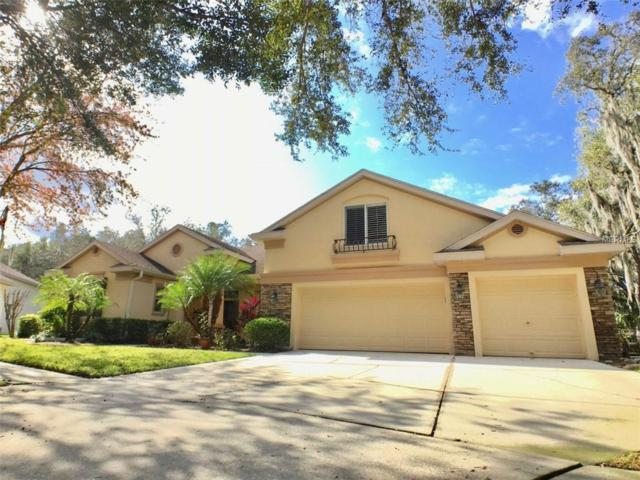 5915 Jaegerglen Drive, Lithia, FL 33547 (MLS #O5757704) :: Arruda Family Real Estate Team