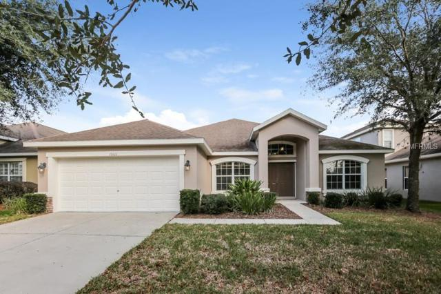 15511 Starling Water Drive, Lithia, FL 33547 (MLS #O5757764) :: The Duncan Duo Team