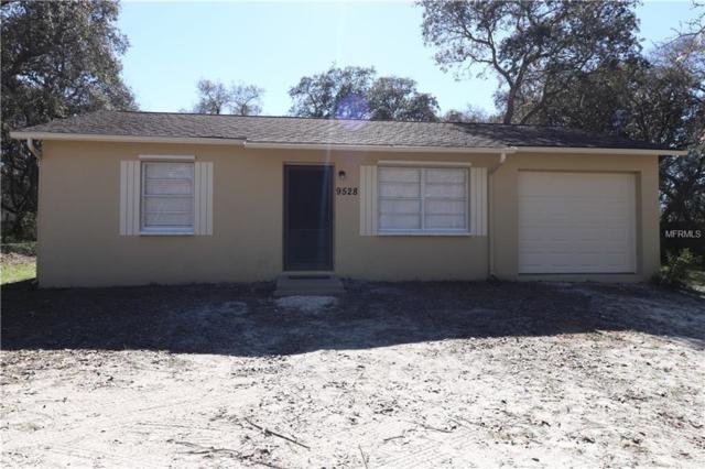 9528 Passaic Drive, Hudson, FL 34667 (MLS #O5757872) :: Jeff Borham & Associates at Keller Williams Realty
