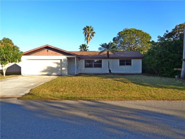 23512 Ferndale Avenue, Port Charlotte, FL 33980 (MLS #O5757989) :: Homepride Realty Services