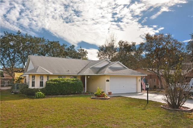 600 Cricket Hollow Lane, Eustis, FL 32726 (MLS #O5758055) :: KELLER WILLIAMS CLASSIC VI