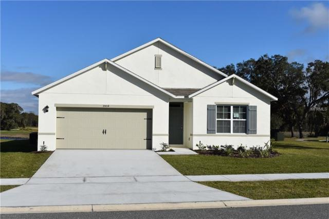 35014 Sweet Leaf Lane, Leesburg, FL 34788 (MLS #O5758393) :: RE/MAX Realtec Group