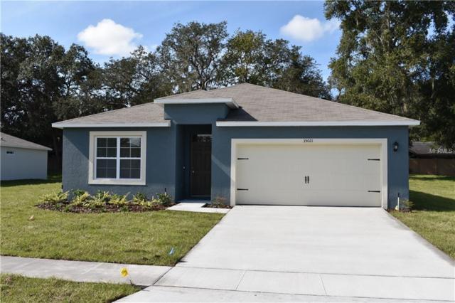 35021 Sweet Leaf Lane, Leesburg, FL 34788 (MLS #O5758395) :: EXIT King Realty