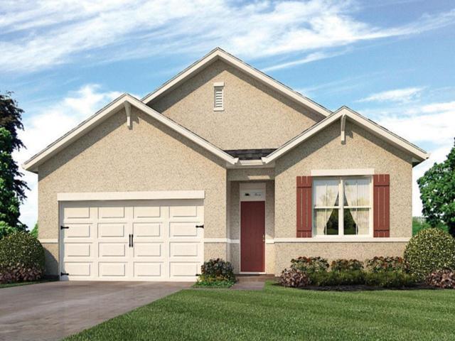 2531 Newmark Drive, Deltona, FL 32738 (MLS #O5758396) :: EXIT King Realty