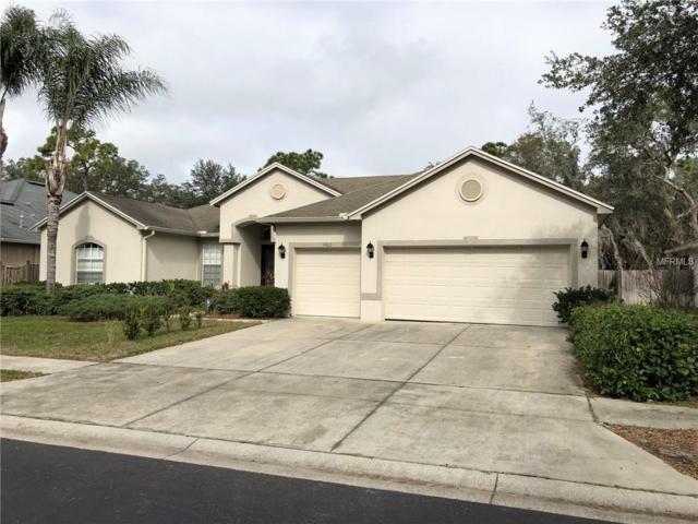 5905 Trevors Way, Tampa, FL 33625 (MLS #O5758601) :: Lock & Key Realty