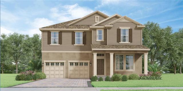 Address Not Published, Winter Garden, FL 34787 (MLS #O5758790) :: Premium Properties Real Estate Services