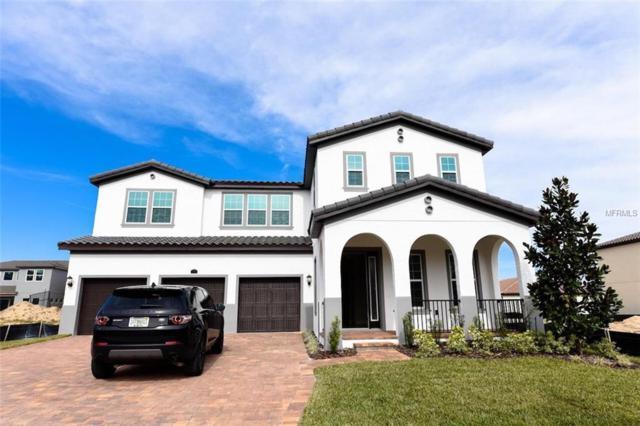1716 Amsel Falls Park Terrace, Winter Garden, FL 34787 (MLS #O5758875) :: Premium Properties Real Estate Services
