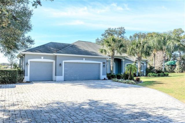 21213 Canoe Pass Street, Clermont, FL 34715 (MLS #O5759008) :: Griffin Group