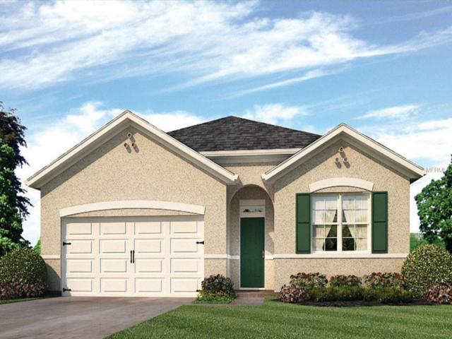 413 Panda Place, Davenport, FL 33837 (MLS #O5759064) :: Team Bohannon Keller Williams, Tampa Properties