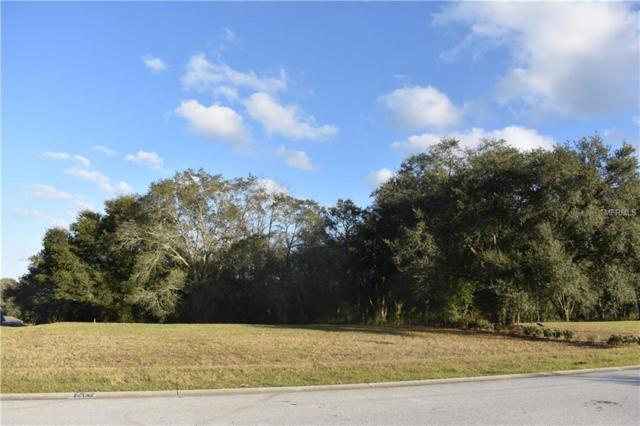 30126 Bretton Loop, Mount Dora, FL 32757 (MLS #O5759507) :: Sarasota Home Specialists