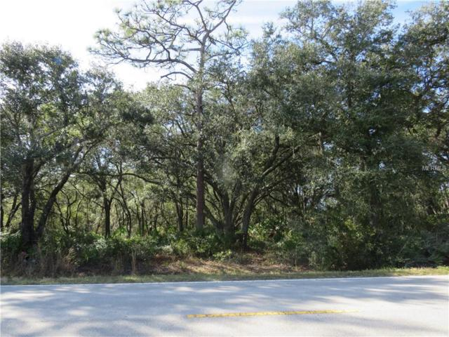 Hickory Tree Road, Saint Cloud, FL 34772 (MLS #O5759593) :: The Duncan Duo Team
