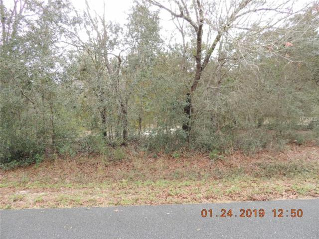 SE 159TH Place Lot 56, Summerfield, FL 34491 (MLS #O5760051) :: The Duncan Duo Team